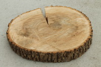 "Wood Slabs 12"" Diameter Qty. 8"