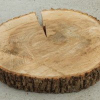 "Wood Slabs 12"" Diameter Qty. 8"